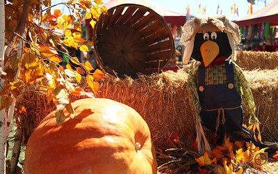 Del Sur Fall Festival 2017 – Sunday